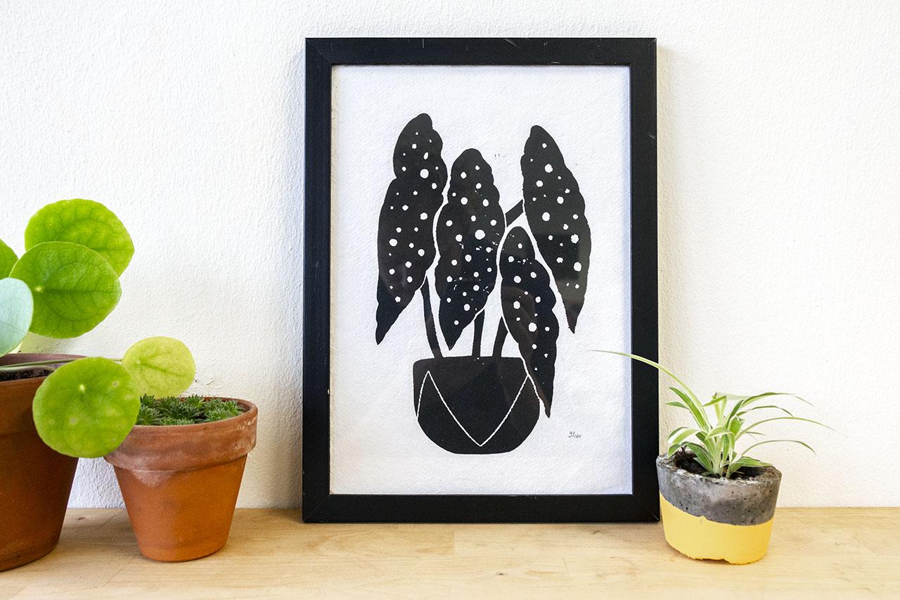Begonia Maculata A4 Print Zwart Wit