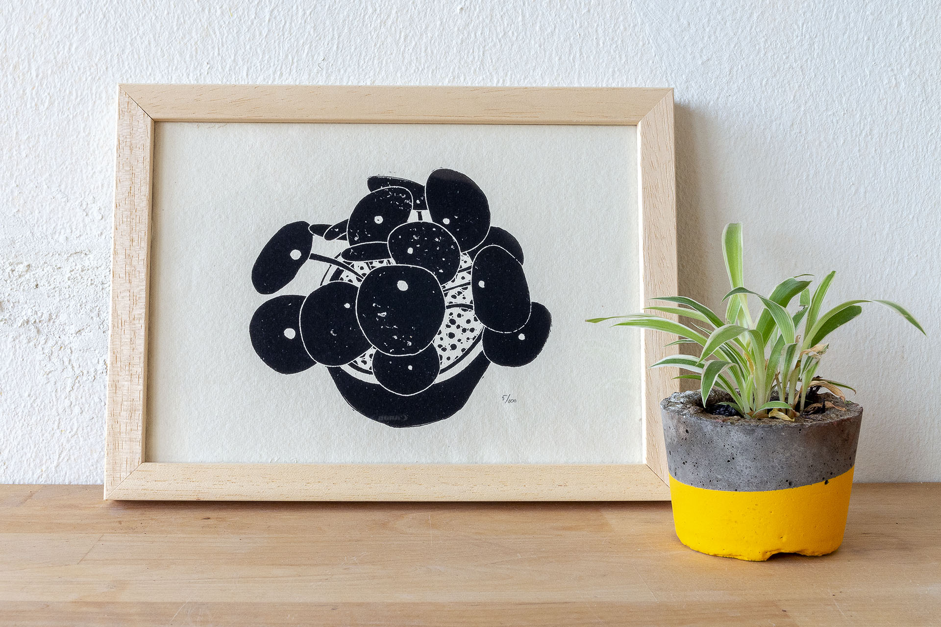 Linosnede pannekoekenplant